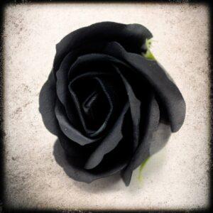 črna vrtnica milo dekorativno