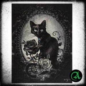 mačka z vrtnico slika na platnu